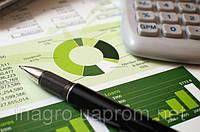 Разработка бизнес-планов и технико-экономических обоснований (ТЭО) по переработке плодов, ягод и овощей.