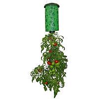 Topsy turvy tomato planter - выращивание помидоров вверх корнями, подходит для городских квартир
