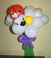Букет из шариков Ромашки белые с божьей коровкой на День рождения