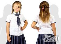 Блузка для девочки школьная нарядная с галстуком в горох