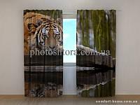 Фотошторы Мудрость тигра