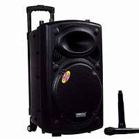 Мобильная акустическая система Temeisheng DP 2305F