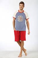 Комплект футболка с шортами мужской SEXEN 33137