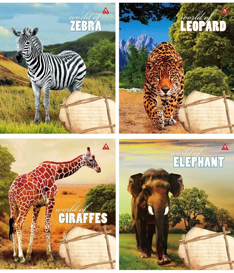 """Тетрадь 24 листа линия """"У світі тварин"""""""