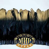 Тесьма перьевая из гусиных перьев.Цвет Black+Gold. Цена за 0.5м