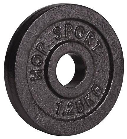 Диск металлический Hop-Sport 1,25 кг , фото 2