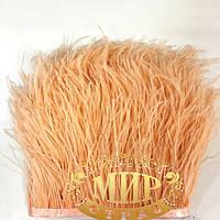 Тесьма страусинная  Цвет Lt Peach  Цена за 0.5м