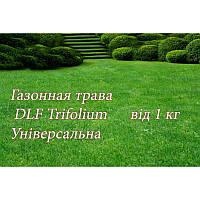 Газонная трава Универсальная UNIVERSAL ROBUSTICA 1 кг