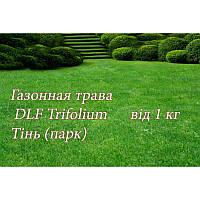 Газонна трава Universal PARK теневая, 1 кг