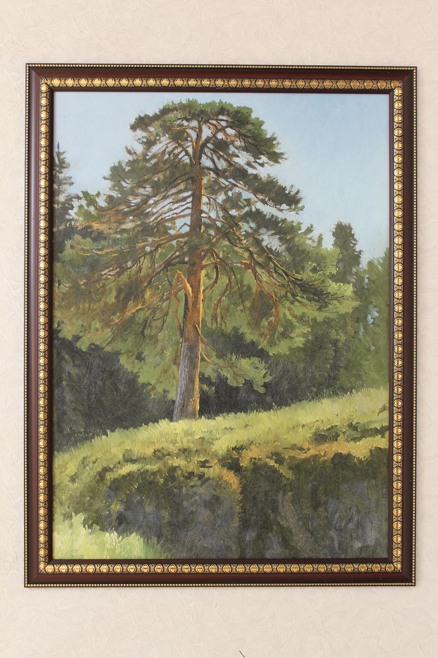 """Картина """"Дуб в лесу""""."""