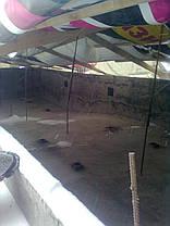 Бетонирование бассейнов, фото 2