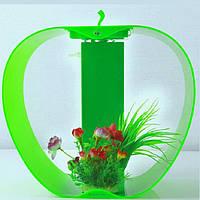 Зеленый Аквариум в форме яблока с подсветкой Apple Cleair