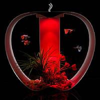 Красный Аквариум в форме яблока с подсветкой Apple Cleair