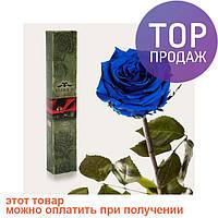 Долгосвежая роза Синий САПФИР (5 карат на коротком стебле) / цветы
