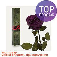 Долгосвежая роза Фиолетовый Аметист в подарочной упаковке (не вянут от 6 месяцев до 5 лет)/ цветы
