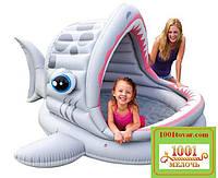 "Детский надувной бассейн Intex 57120""Акула"", размер201х198х109 см."