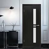 Двери Омис Нота ФП венге, фото 2