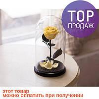 Роза в Колбе Желтый Топаз 5 карат / цветы