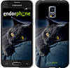 "Чехол на Samsung Galaxy S5 mini G800H Дымчатый кот ""825c-44-532"""