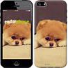 """Чехол на iPhone 5s Boo 2 """"890c-21-532"""""""