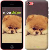 "Чехол на iPhone 5c Boo 2 ""890c-23-532"""