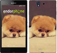"Чехол на Sony Xperia Z C6602 Boo 2 ""890c-40-532"""