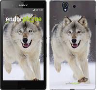 "Чехол на Sony Xperia Z C6602 Бегущий волк ""826c-40-532"""