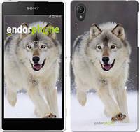 """Чехол на Sony Xperia Z2 D6502/D6503 Бегущий волк """"826c-43-532"""""""