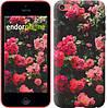 """Чехол на iPhone 5c Куст с розами """"2729c-23-532"""""""