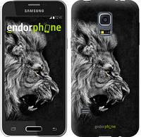 "Чехол на Samsung Galaxy S5 mini G800H Лев ""1080c-44-532"""