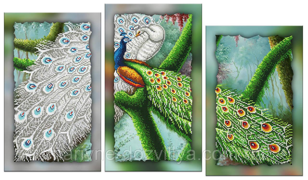 """Схема-триптих для вышивки бисером на подрамнике (модульная картина) """"Пара павлинов"""""""