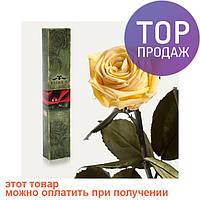 Долгосвежая роза Желтый Топаз 7 карат (короткий стебель) / цветы