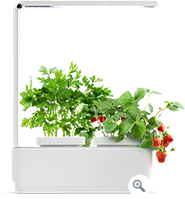 Гидропонная установка Magic Garden mini L