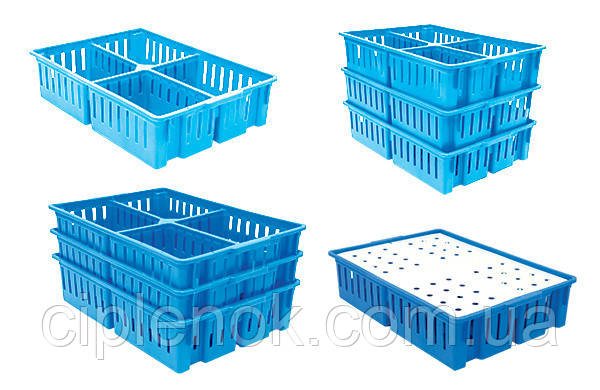 Ящик для перевозки цыплят, 4 отделения
