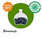 Семена подсолнечника под гранстар ВИНЧЕНЦО (Вінченцо) 108 дн. фр. Стандарт, фото 3