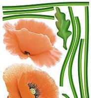 Наклейка, маки, красные, цветы, интерьерная Наш Декупаж