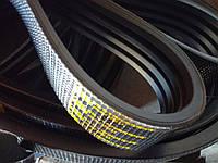 Ремень 2НВ-4300 многоручьевой приводной БЦ , фото 1