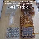 Упаковка под перепелиные яйца на 20 шт. Оптом. Прозрачная упаковка для перепелиных яиц. Материал РЕТ.