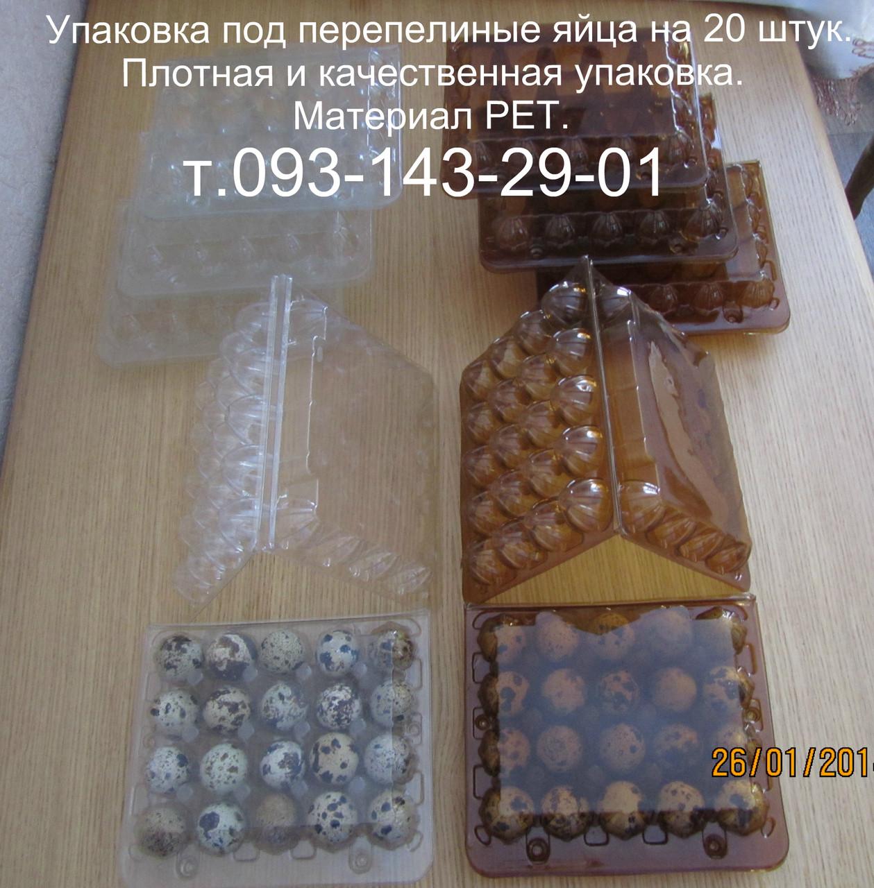 Упаковка под перепелиные яйца на 20 шт. Коричневая упаковка для перепелиных яиц. Материал РЕТ.