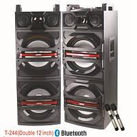 Активная акустика T-244 с радиомикрофонами (600W/USB/FM)