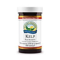 Келп, растительный йод бад НСП для беременных.
