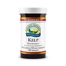 Вітаміни для щитовидної залози - Келп бура водорість бад НСП. рослинний йод для вагітних.