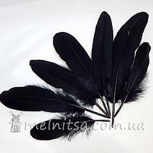Перо гусиное ~10-15 см, черный