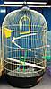 Круглая клетка для  попугаев. Gold-Diva 40*70см