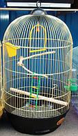 Круглая клетка для  попугаев. Gold-Diva 40*70см, фото 1