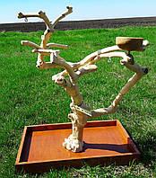 Деревья-подставки для попугая (из кофейного дерева).