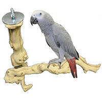 Современная  жердочка для птиц, фото 1