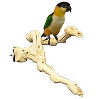 Жердочки  для птиц, созданны самой природой., фото 1