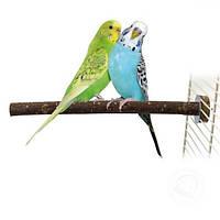 Жердочка для птиц, натуральное деревою, фото 1