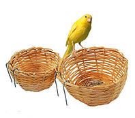 Гнездо для канареек , фото 1